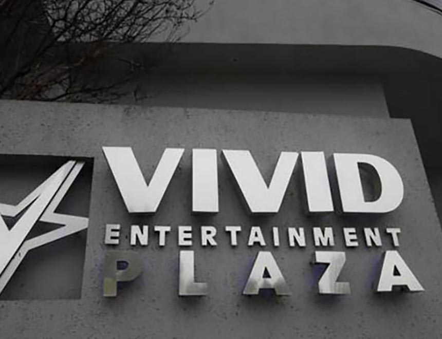 Vivivd Entertainment Porn